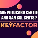 What are Wildcard Certificates and SAN SSL Certs